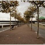 Dusseldorf_2013___IMG_5399