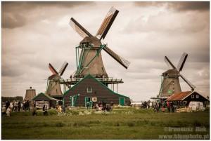Holandia_majowka_2014___IMG_5306
